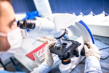 rasterelektronenmikroskopie weiterbildung