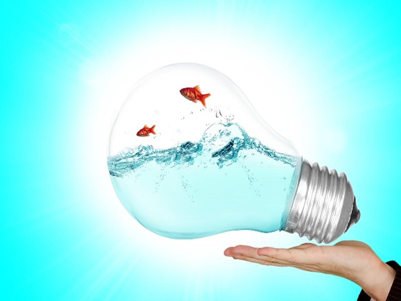Weiterbildung in Change Management